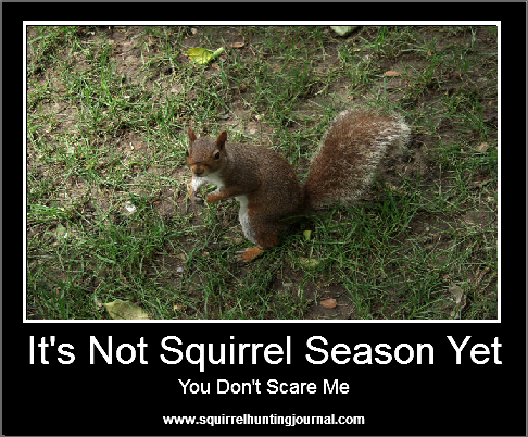 Squirrel Hunting Humor - You Don't Scare Me