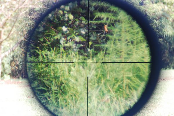 Nikon EFR reticle 9 power