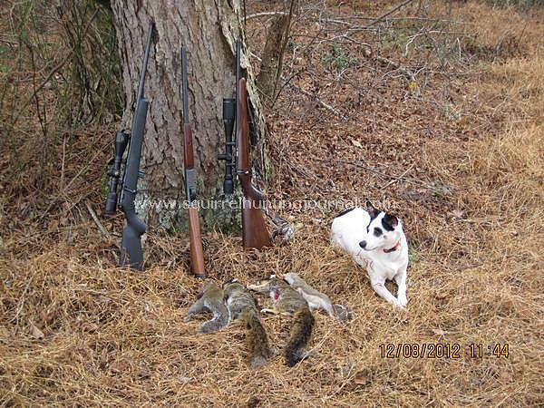 Sassy with 2 FoxS