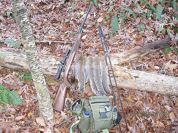 still hunting success 2