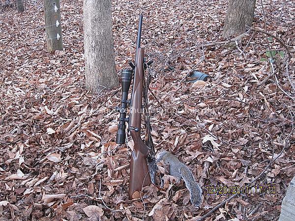 still hunting success