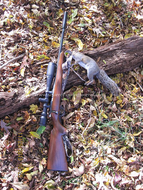37 yard squirrel crop circle shot