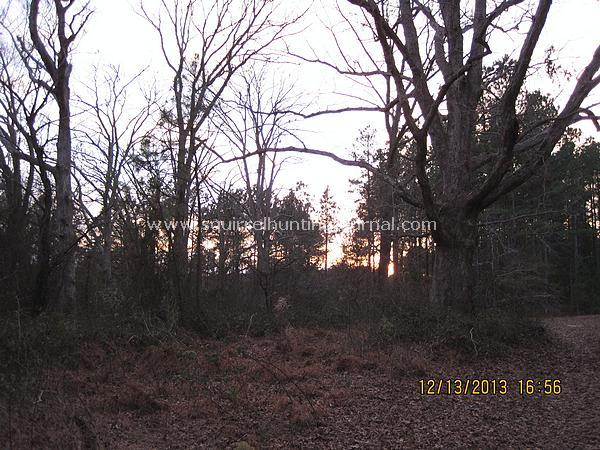 12-13-13 scenery