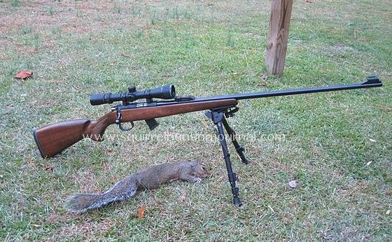 CZ 452 Ultra Lux Squirrel