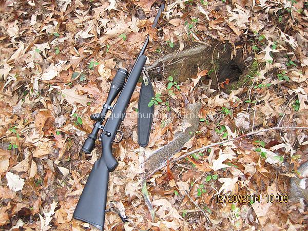 12-20-14 Brad's 3 shot hole squirrel