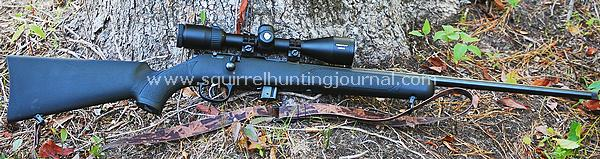 Squirrel Hunting Adventures — New Post has been published on